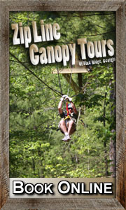 Georgia Zipline Canopy Tour